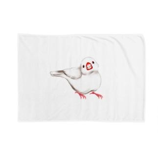 白文鳥 Blankets