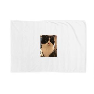 令和キャット Blankets