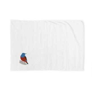 イソヒヨドリ Blankets