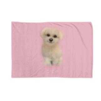 こてつ1 Blankets