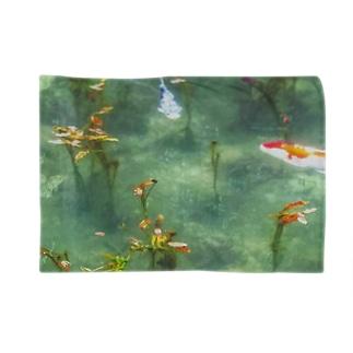 モネの池の様子 Blankets