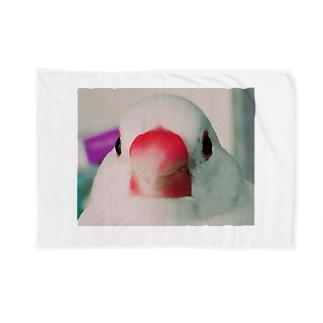 だんご大明神 Blankets