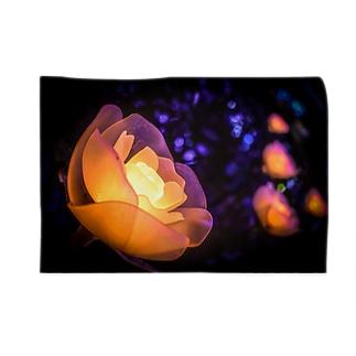 衰えない輝き Blankets