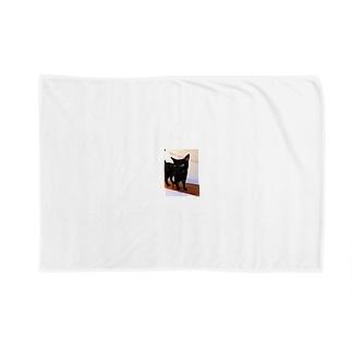 黒猫は不吉じゃない Blankets