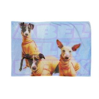 AEB Blankets