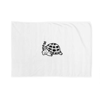 眠るリクガメ Blankets
