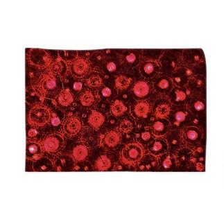 Divide red Blankets