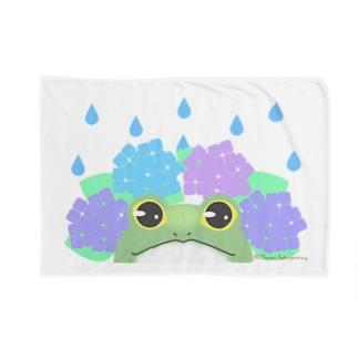 ひょっこりガエルと紫陽花 Blankets