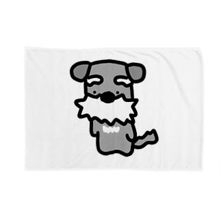 シュナ!はかしこそうな犬! Blankets