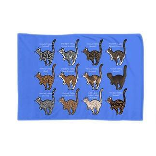 Tabbies Cat(集合) Blankets