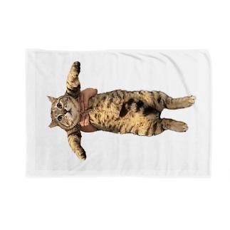 よこよこ、つーさん、 Blankets