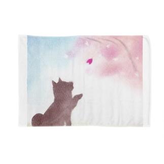 柴犬と桜 Blankets