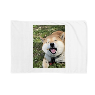 HARUおめ Blankets
