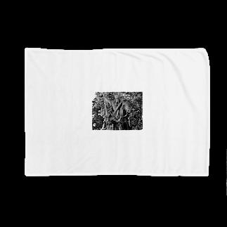 WORLD TOP ARTIST modern art litemunte world top photographer luca artのMost Expensive Art Photo WORLD TOP ARTIST 2021 2020 WORLD PHOTO MUSEUM SHOP Photographer Lei Shionz Modern Art Nikon P1000 Travel brand Auction Japan 世界 トップアーティスト 写真家 モダンアート ブランド オークション 限定アート cloa modern art ウラジオストク ロシア 日本 world union market.com Blankets