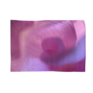 ピンクにくるくるなクルクマ Blankets