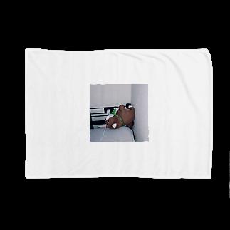 kid_kzkのらいおん Blankets