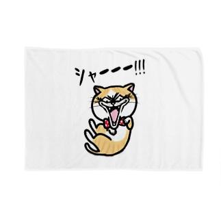 キレねこ『シャー全身』 Blankets
