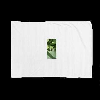 oinarikozouのアロエ Blankets
