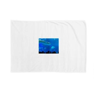 ジンベイザメの写真 Blankets