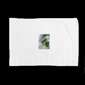 __aiceriseのわにのすけ Blankets