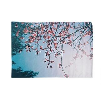 花 Blankets