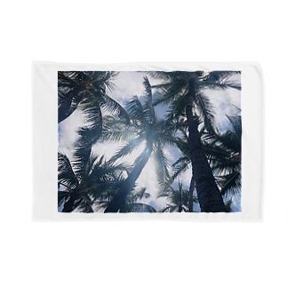 ヤシの木 Blankets