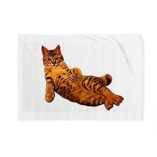 Elegant Cat Blankets