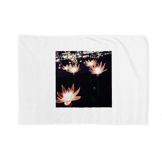 光の蓮 Blankets
