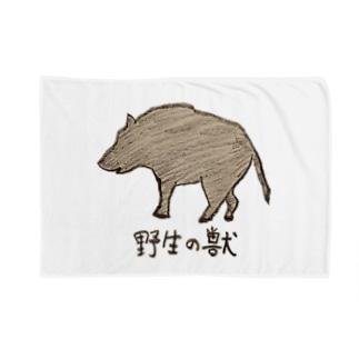 野生の獣くん Blankets