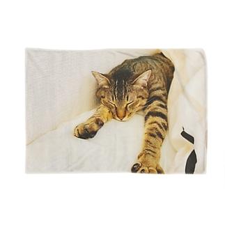 ころころ Blankets