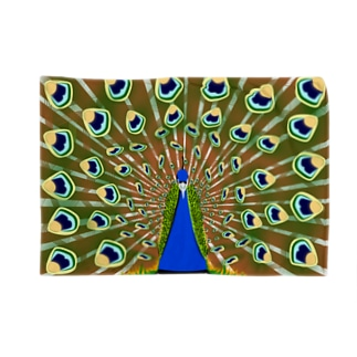 インドの国鳥 Blankets