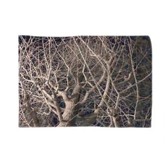 夜の木 枝ぴんぴん ウッドナイト Blankets