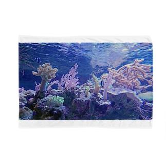 aquarium Blankets