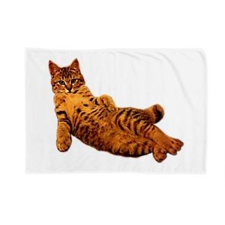 Elegant Cat 2 Blankets