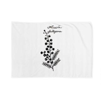 植物図鑑シリーズ…ミモザ Blankets