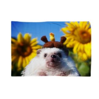 ハリネズミつんさん秋のひまわり畑 Blankets
