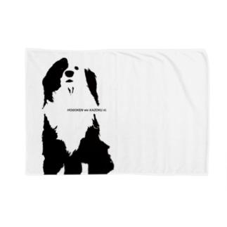 片パンダのボーダーコリーMIX Blankets