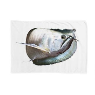 シルバーアロワナ Blankets