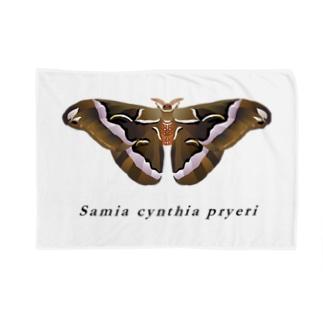 シンジュサン Blankets