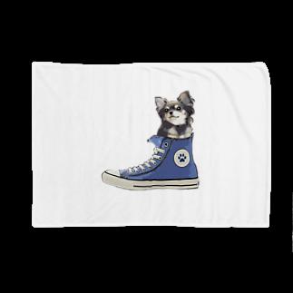 犬グッズの店しえるぶるーのスニーカーにすっぽり入ったチワワ(ブラックタン・青) Blankets