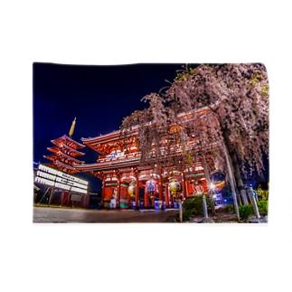 浅草寺 五重塔と宝蔵門としだれ桜 Blankets