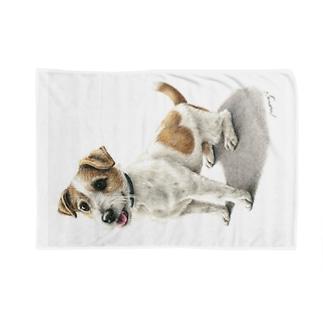 ジャックラッセルテリア3 Blankets