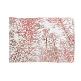 林の迷子 Blankets