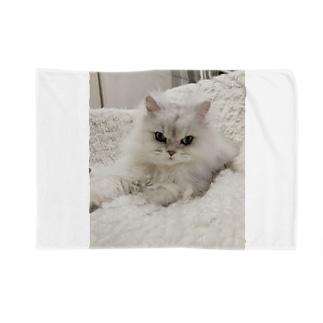 しろねこ Blankets
