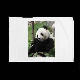 HKG パンダの右奥歯で Blankets