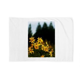 菊芋と樹木 DATA_P_139 tree Blankets