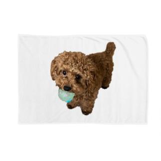 伝説の秘宝を携えし犬 Blankets