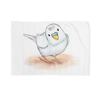 セキセイインコ レティ【まめるりはことり】 Blankets