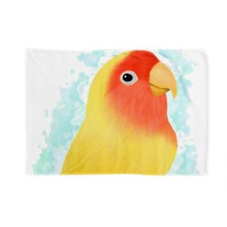 コザクラインコ ルチノー【まめるりはことり】 Blankets