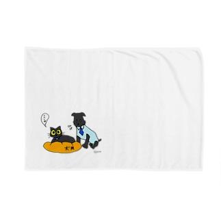 猫にベッドを取られる犬 Blankets